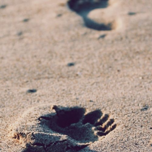 Christianity: Finding your Feet in an Emerging World